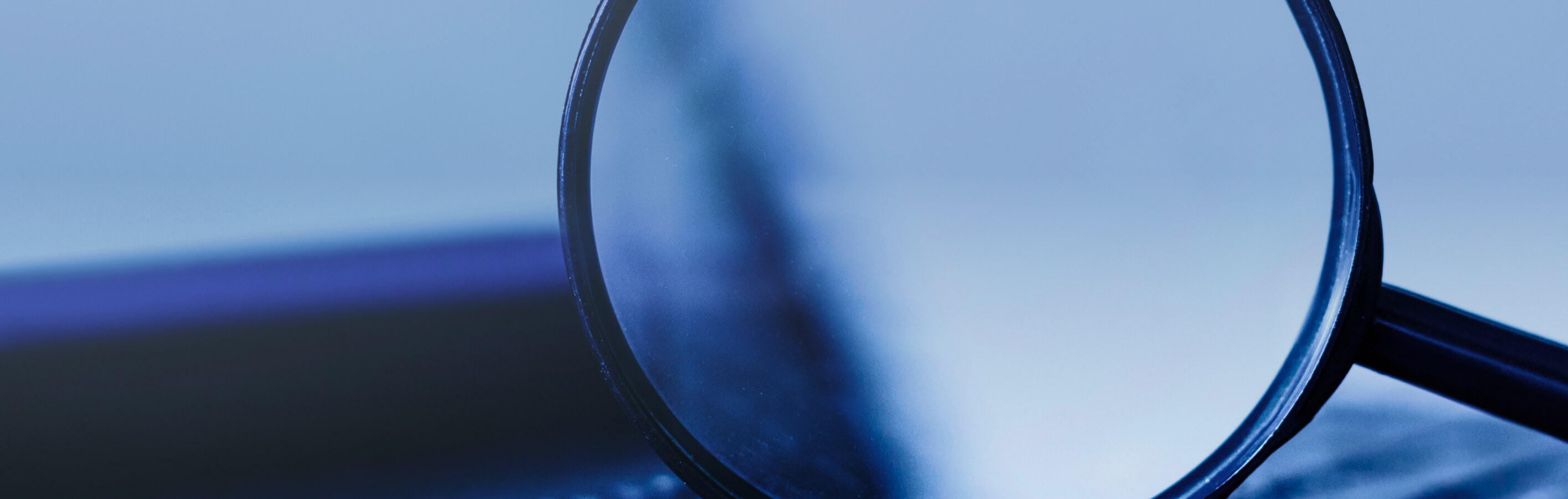 Investigations Monitorships
